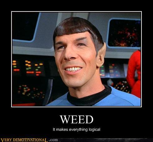 Mr. Spock Weed
