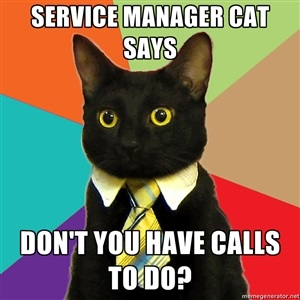 """service manager cat says, Don't you have calls to do"""""""